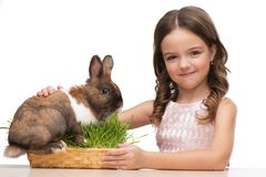 Mooie meisjeszitting met leuk bruin konijntje royalty-vrije stock foto's