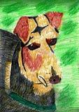 Mooie mengen-Rassenhond - Kleurpotloodtekening vector illustratie
