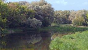 Mooie mening door de rivier stock videobeelden