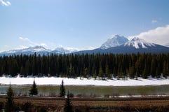 Mooie mening over het brede rijweg met mooi aangelegd landschap van de Boogvallei Stock Foto's