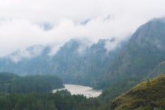 Mooie mening van bergrivier in de zomer Stock Afbeelding