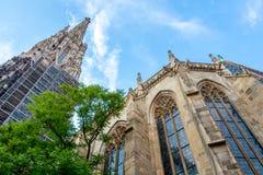Mooie mening van beroemde St Stephen ` s Kathedraal in Wenen, Oostenrijk stock afbeeldingen