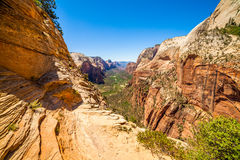 Mooie mening van canion in Zion National Park Royalty-vrije Stock Foto