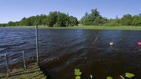 Mooie mening van de lijn van de meerkust Donkerblauwe waterspiegel op groene bomen en blauwe hemelachtergrond zweden stock videobeelden