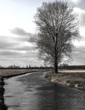 Mooie mening van de rivier, de bomen, het bos en de gebieden op backgr Stock Afbeelding
