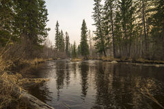 Mooie mening van de rivier in Siberië Stock Foto's