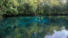 Mooie mening van de turkooise glasheldere wateren van de lagune van Ginnie Springs, Florida De V.S. stock fotografie