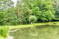Mooie mening van een meer met bezinningen in het water dat door weelderig groen wordt omringd royalty-vrije stock afbeelding