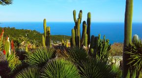 Mooie mening van het dorp van Eze, een botanische tuin met cactussen, aloë Mediterrane, Franse Riviera Royalty-vrije Stock Fotografie