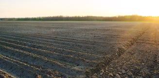 Mooie mening van het geploegde gebied op een zonnige dag Voorbereiding voor het planten van groenten Landbouw Landbouwgrond Zacht royalty-vrije stock foto's