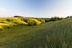 Mooie mening van het grasgebied met sunbright royalty-vrije stock fotografie