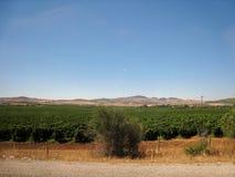Mooie mening van het landschap in Tunesië Juli 2013 Royalty-vrije Stock Foto