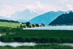 Mooie mening van het meer Muta Royalty-vrije Stock Afbeeldingen