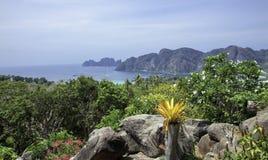 Mooie mening van het overzees, de tropische installaties en de rotsen en de bergen stock foto's