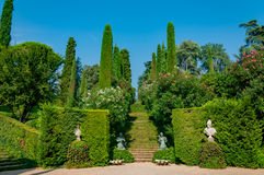 Mooie mening van het park met helder groen Royalty-vrije Stock Foto