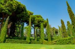 Mooie mening van het park met helder groen Stock Afbeelding