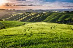 Mooie mening van het voetpad van het land bij zonsondergang in Toscanië Royalty-vrije Stock Foto's