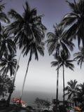 Mooie mening van hierboven in het eiland Thailand van wereldkoh samui Stock Foto's
