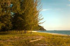 Mooie mening van Koh Lipe Island en hemel van het bos van de pijnboomboom Royalty-vrije Stock Foto's