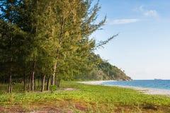 Mooie mening van Koh Lipe Island en hemel van het bos van de pijnboomboom Stock Foto's