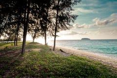 Mooie mening van Koh Lipe Island en hemel van het bos van de pijnboomboom Stock Afbeelding