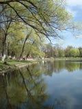 Mooie mening van meer in de vroege lente, de voorstad van Moskou Stock Afbeelding