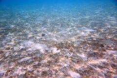Mooie mening van onderwaterwereld met dode koraalriffen Blauw water en witte zandbodem snorkeling r royalty-vrije stock fotografie
