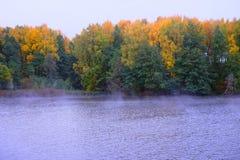 Mooie mening van Rivier en de herfstbos Stock Afbeelding