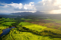 Mooie mening van spectaculaire wildernissen, gebied en weiden van het eiland van Kauai dichtbij Lihue-stad stock afbeeldingen
