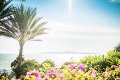 Mooie mening van verbazend tropisch landschap met exotische palmen royalty-vrije stock afbeeldingen