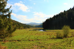 Mooie meningen van de bergen van de Karpaten Stock Afbeelding