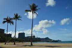 Mooie meningen van Waikiki-Strand met indrukwekkende palmen stock foto's