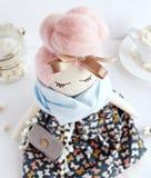 Mooie met de hand gemaakte stoffenpop stock afbeeldingen
