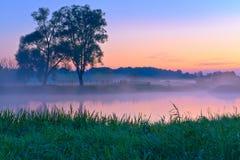 Mooie mistige dageraad over de Narew-rivier. Stock Afbeeldingen