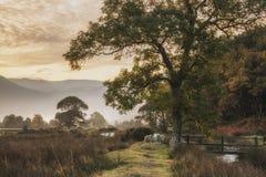 Mooie mistige nevelige de Herfstzonsopgang over platteland surroundin Royalty-vrije Stock Foto's