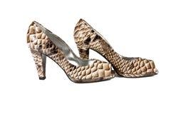 Mooie modieuze vrouwelijke schoenen van een leer Royalty-vrije Stock Afbeelding