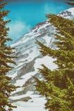 Mooie MT Regenachtiger op een blauwe de zomerhemel stock afbeeldingen