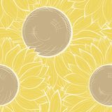 Mooie naadloze achtergrond met wijnoogst sunflow Royalty-vrije Stock Foto's