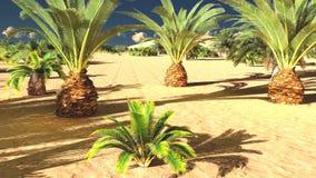 Mooie natuurlijke achtergrond - het Afrikaanse oase 3d teruggeven Royalty-vrije Stock Afbeeldingen
