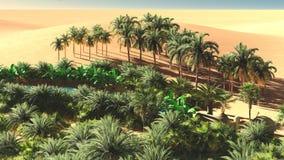 Mooie natuurlijke achtergrond - het Afrikaanse oase 3d teruggeven Stock Fotografie