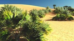 Mooie natuurlijke achtergrond - het Afrikaanse oase 3d teruggeven Royalty-vrije Stock Foto's