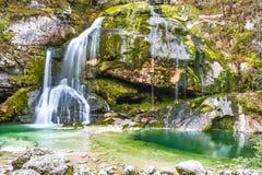 Mooie natuurlijke duidelijke stromend die waterwaterval met groen mos wordt behandeld royalty-vrije stock fotografie
