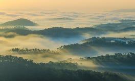 Mooie ochtend met zonnestraal door de bomen royalty-vrije stock foto's