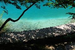 Mooie oever van het meer Zuiver duidelijk water, vissen, houten foot-path Royalty-vrije Stock Afbeeldingen