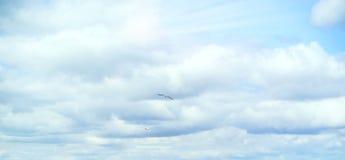 Mooie onweershemel met wolken, apocalyps, donder, tornado Achtergrond van donkere wolken vóór of na een onweersbui Stock Foto's
