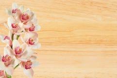 Mooie orchideebloem over houten textuurclose-up Stock Foto's
