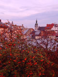 Mooie oude stad van Lviv in de herfst Stock Foto