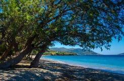 Mooie overzeese lagune met boom Royalty-vrije Stock Fotografie