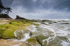 Mooie overzeese mening, golf die die de rots raken door trillend groen mos wordt behandeld stock foto