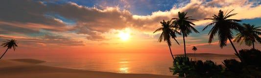 Mooie overzeese zonsondergang op het strand met palmen Stock Foto's